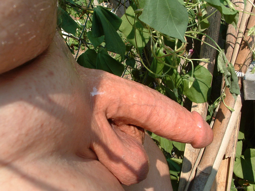 His Big Shaved Cock glistening outdoors in the sunshine