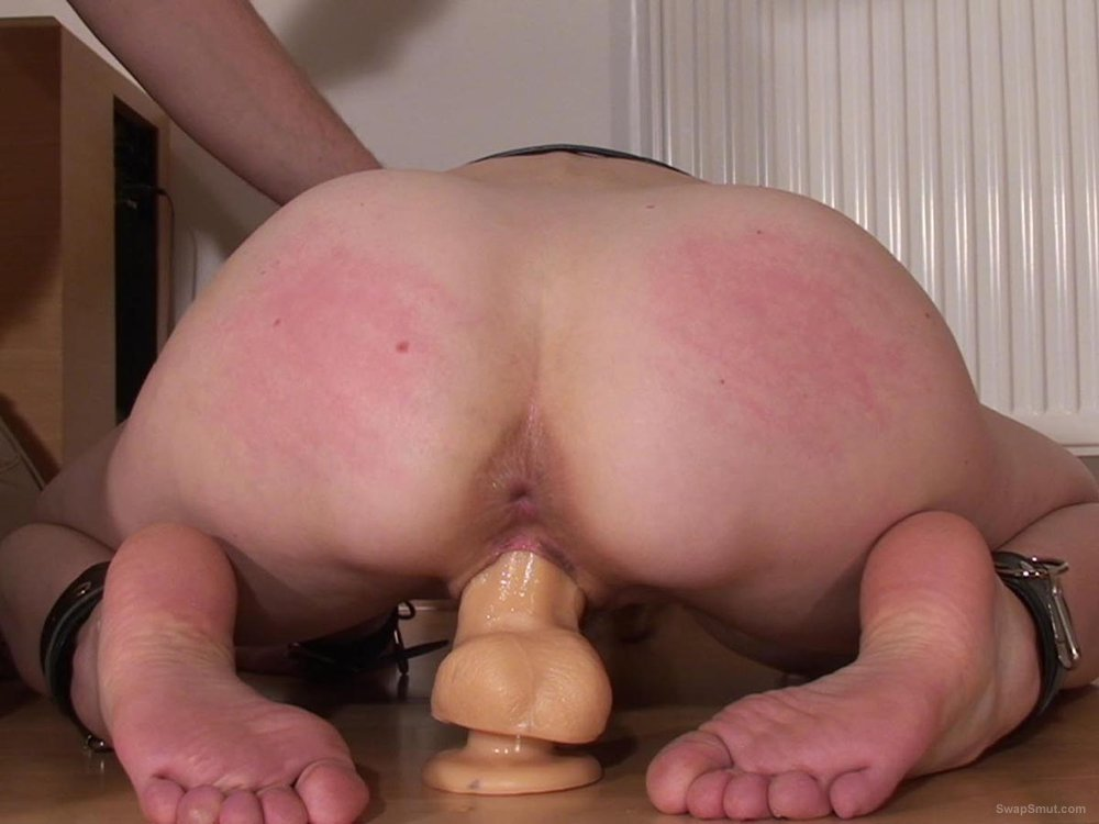from Brooks riding suction cup dildo pussy