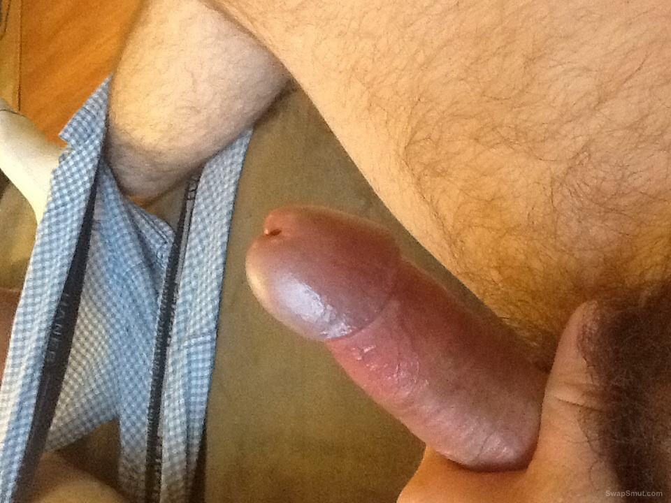 My rock hard dick with a little pre cum on the head of the penis