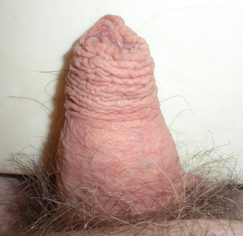 This is my little tiny uncut dick for everyone to see.