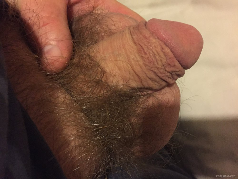 A few pictures of my small cock