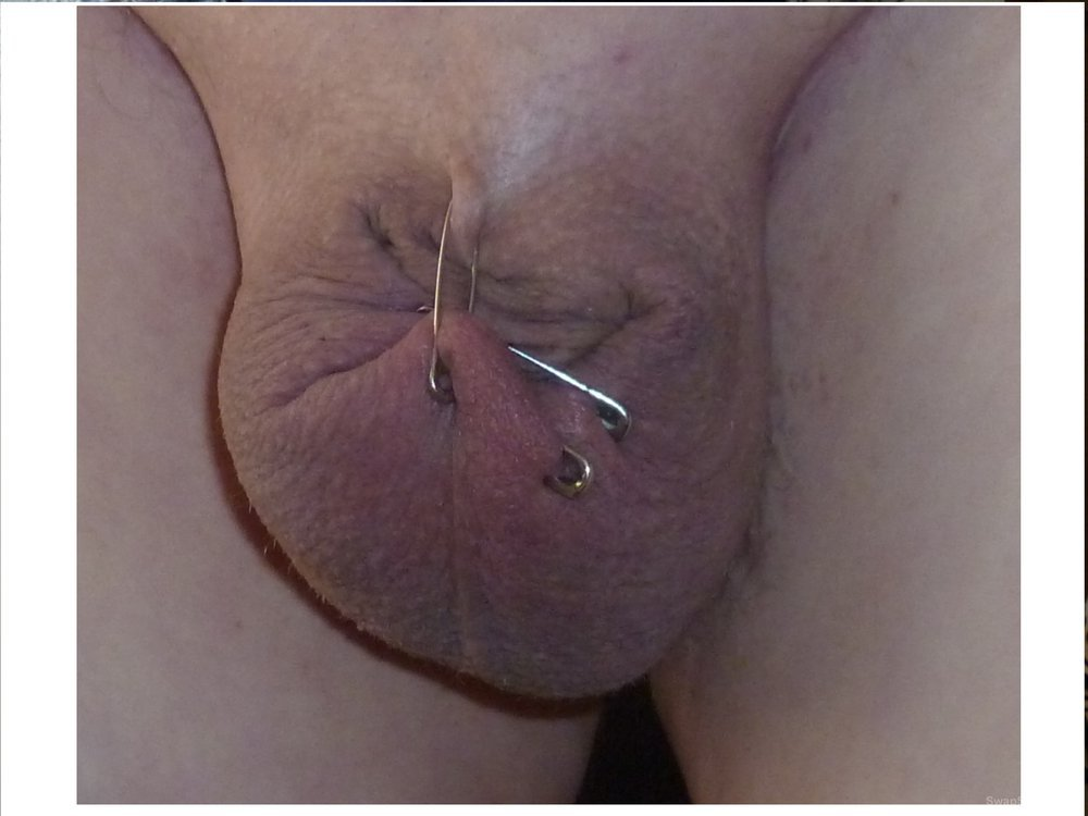 Getting My Cock Pierced