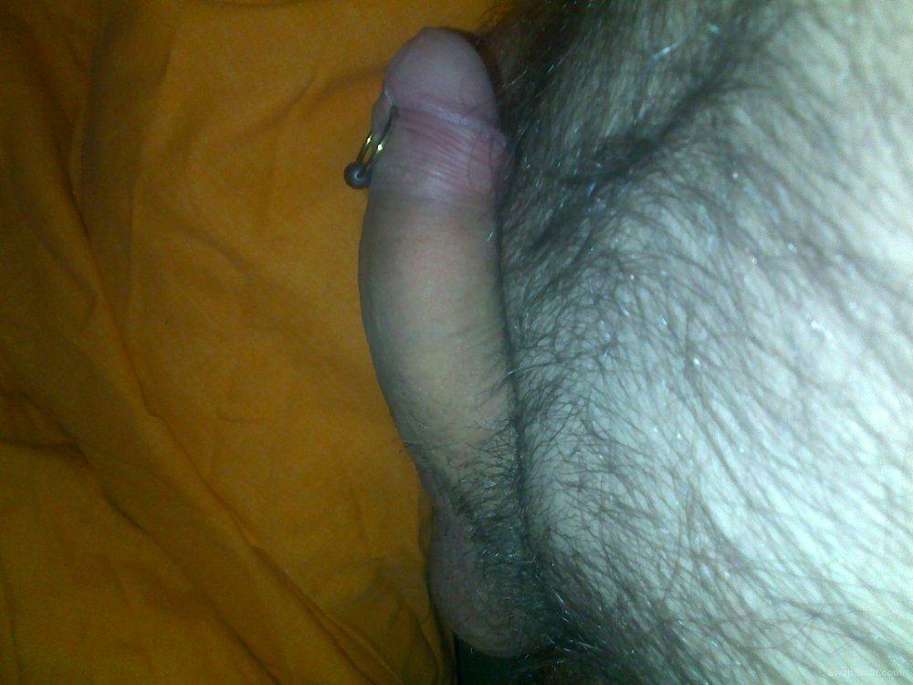 my pierced cock