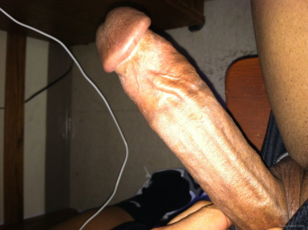 Vascular cock ready for some juicy wet pussy to penetrate and fuck